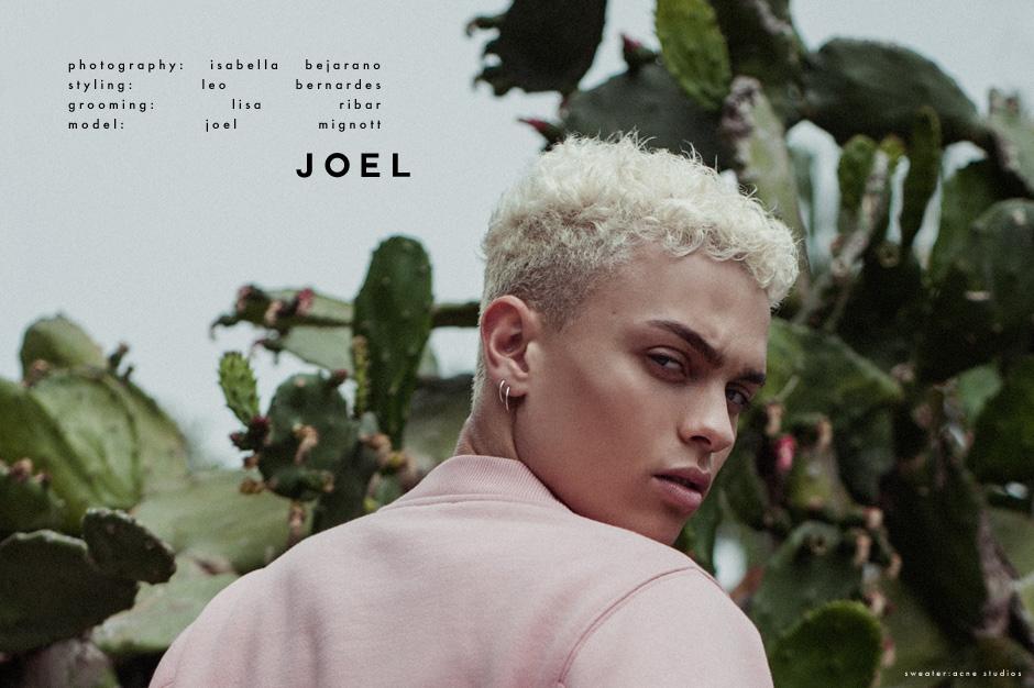 JOEL1a